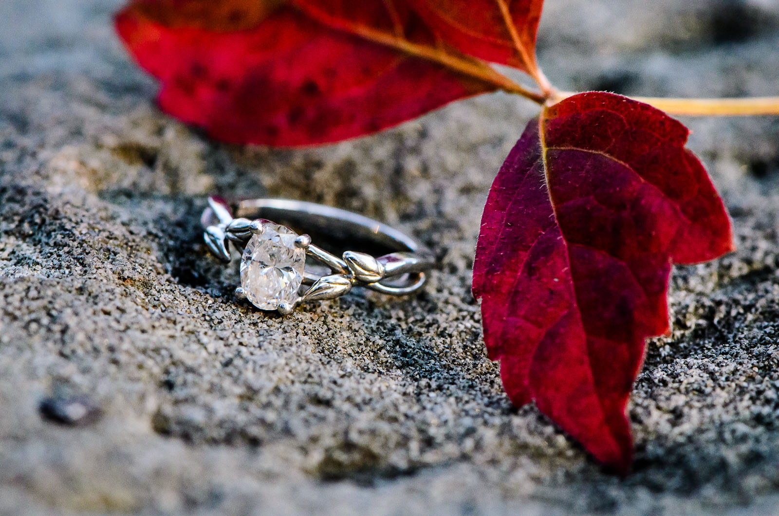 Eric_and_Christy_Photography_Blog_Stephanie_Nick_Engagement-19